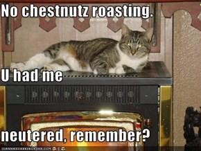 No chestnutz roasting. U had me neutered, remember?