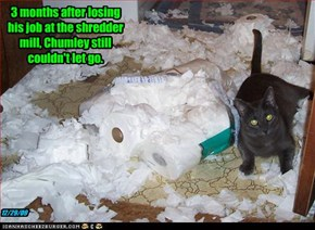 3 months after losing his job at the shredder mill, Chumley still couldn't let go.