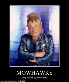 MOWHAWKS
