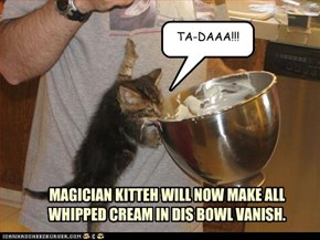 MAGICIAN KITTEH WILL NOW MAKE ALL WHIPPED CREAM IN DIS BOWL VANISH.
