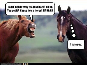 HA HA, Get it?  Why the LONG Face!  HA HA You get it?  Cause he's a horse!  HA HA HA
