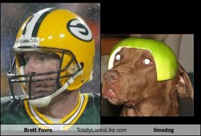 Brett Favre Totally Looks Like limedog