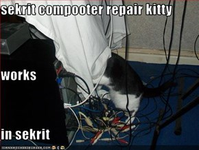 sekrit compooter repair kitty works  in sekrit