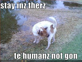 stay inz therz  te humanz not gon