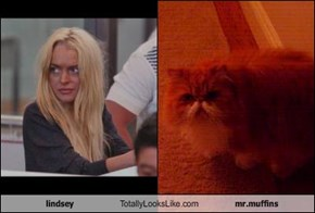 lindsey Totally Looks Like mr.muffins