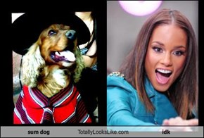sum dog Totally Looks Like idk
