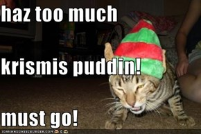 haz too much krismis puddin!  must go!