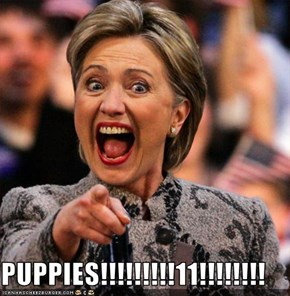 PUPPIES!!!!!!!!!11!!!!!!!!