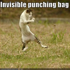 Invisible punching bag