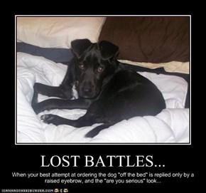 LOST BATTLES...
