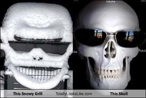 This Snowy Grill Totally Looks Like This Skull
