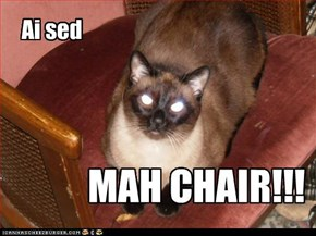 MAH CHAIR!!!