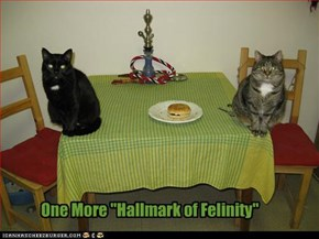 "One More ""Hallmark of Felinity"""