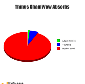 Things ShamWow Absorbs