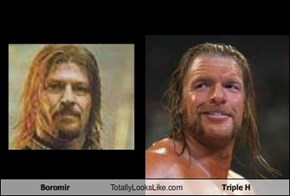 Boromir Totally Looks Like Triple H