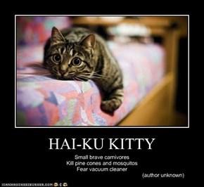 HAI-KU KITTY