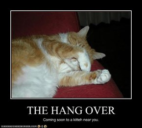 THE HANG OVER