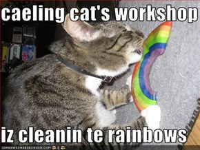 caeling cat's workshop  iz cleanin te rainbows