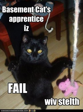Basement Cat's apprentice iz
