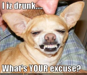 I iz drunk....   What's YOUR excuse?