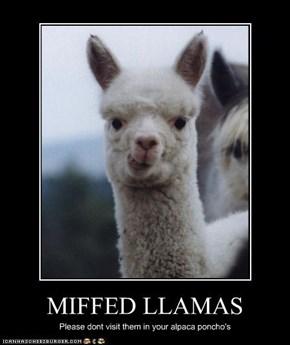 MIFFED LLAMAS