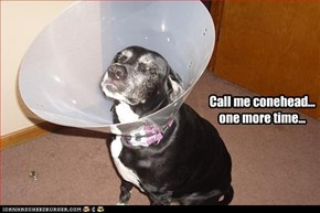 Call me conehead... one more time...