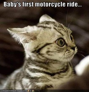 Baby's first motorcycle ride...