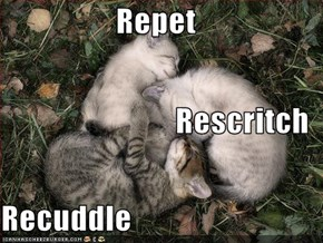 Repet Rescritch Recuddle