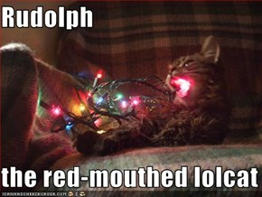 Rudolph  the red-mouthed lolcat