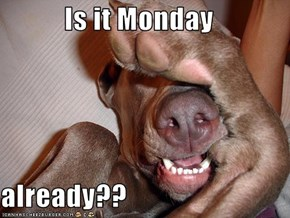 Is it Monday  already??