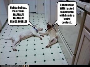 Weird dog???