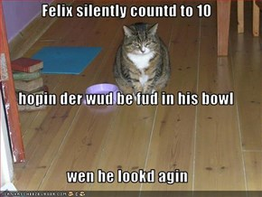 Felix silently countd to 10  hopin der wud be fud in his bowl wen he lookd agin
