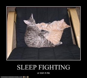 SLEEP FIGHTING