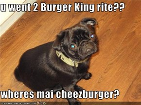 u went 2 Burger King rite??  wheres mai cheezburger?