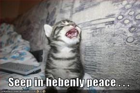 Seep in hebenly peace . . .