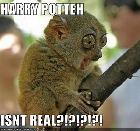 HARRY POTTEH  ISNT REAL?!?!?!?!
