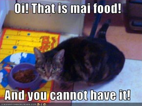 Oi! That is mai food!  And you cannot have it!