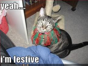 yeah....  i'm festive