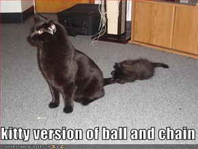 kitty version of ball and chain