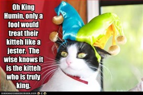 Oh King Humin, only a fool would treat their kitteh like a jester.  The wise knows it is the kitteh who is truly king.