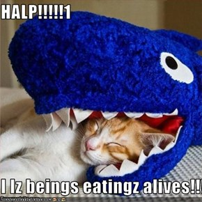 HALP!!!!!1  I Iz beings eatingz alives!!!!