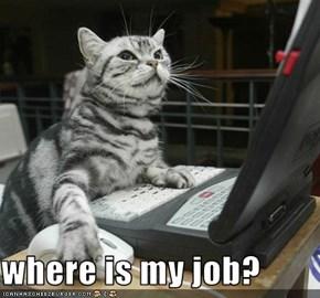 where is my job?