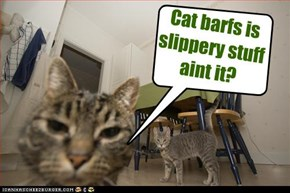 Cat barfs is slippery stuff aint it?