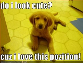 do i look cute?  cuz i love this pozition!