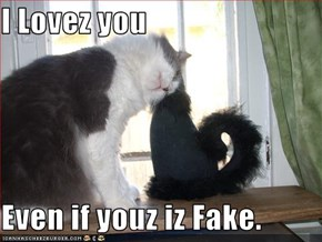I Lovez you  Even if youz iz Fake.