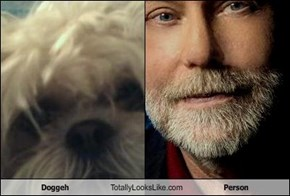 Doggeh Totally Looks Like Person