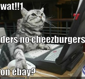 wat!!1 ders no cheezburgers  on ebay?