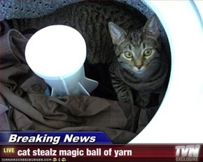 Breaking News - cat stealz magic ball of yarn