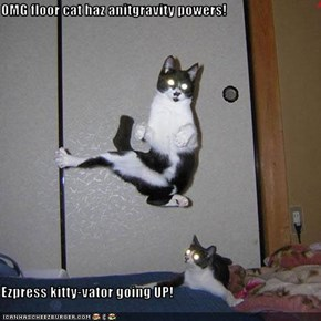 OMG floor cat haz anitgravity powers!  Ezpress kitty-vator going UP!