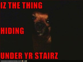 IZ THE THING HIDING UNDER YR STAIRZ